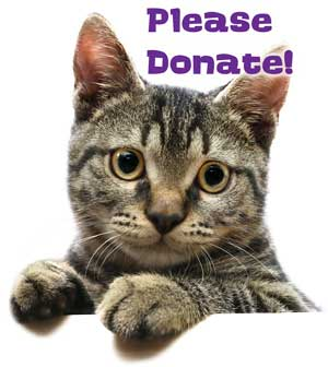 Our Wishlist Ndash Aarf All About Rescue And Fixin Inc